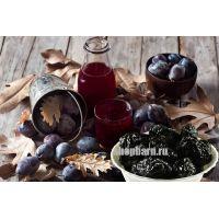 Рецепт самогона на черносливе
